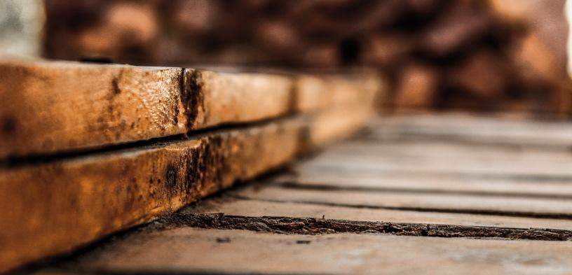 Poduzeću SECTOR d.o.o. odobrena potpora za ulaganje u nabavu strojeva za primarnu i sekundarnu pilansku obradu drva